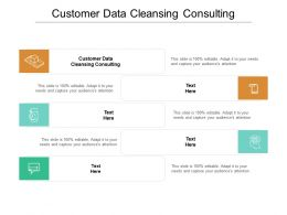 Customer Data Cleansing Consulting Ppt Powerpoint Presentation Inspiration Model Cpb