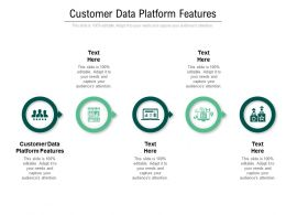 Customer Data Platform Features Ppt Powerpoint Presentation Professional Graphics Template Cpb