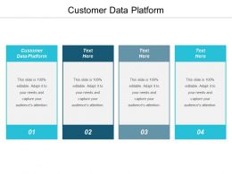 Customer Data Platform Ppt Powerpoint Presentation Pictures Templates Cpb