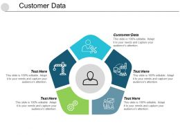 Customer Data Ppt Powerpoint Presentation Summary Format Cpb
