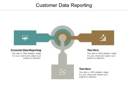 Customer Data Reporting Ppt Powerpoint Presentation Infographic Template Microsoft Cpb