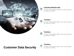 Customer Data Security Ppt Powerpoint Presentation Model Objects Cpb