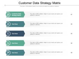 Customer Data Strategy Matrix Ppt Powerpoint Presentation Pictures Infographics Cpb