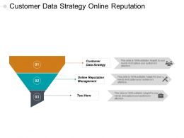 Customer Data Strategy Online Reputation Management Corporate Diversification Cpb