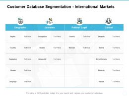 Customer Database Segmentation International Markets Ppt Powerpoint Presentation Styles Icon
