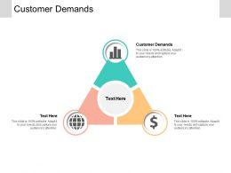 Customer Demands Ppt Powerpoint Presentation File Skills Cpb