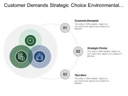 Customer Demands Strategic Choice Environmental Analysis