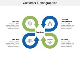 Customer Demographics Ppt Powerpoint Presentation Summary Example Cpb