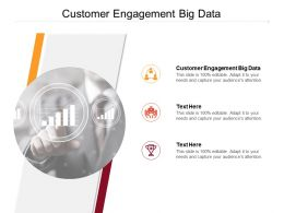 Customer Engagement Big Data Ppt Powerpoint Presentation File Outline Cpb