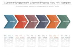 Customer Engagement Lifecycle Process Flow Ppt Samples