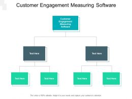 Customer Engagement Measuring Software Ppt Powerpoint Presentation Infographic Template Cpb