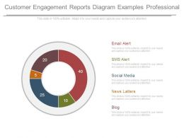 Customer Engagement Reports Diagram Examples Professional