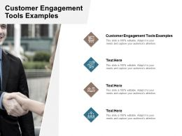 Customer Engagement Tools Examples Ppt Powerpoint Presentation Infographic Template Icon Cpb