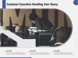 Customer Executive Handling User Query