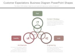 Customer Expectations Business Diagram Powerpoint Shapes