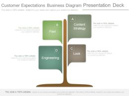 Customer Expectations Business Diagram Presentation Deck