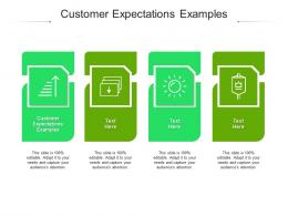 Customer Expectations Examples Ppt Powerpoint Presentation Summary Graphics Design Cpb