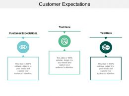 Customer Expectations Ppt Powerpoint Presentation Inspiration Background Image Cpb