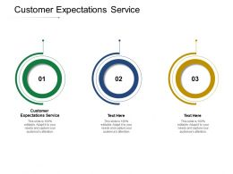 Customer Expectations Service Ppt Powerpoint Presentation Portfolio Show Cpb