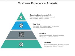 Customer Experience Analysis Ppt Powerpoint Presentation Icon Styles Cpb