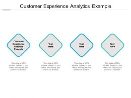 Customer Experience Analytics Example Ppt Powerpoint Presentation Designs Cpb