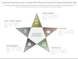 Customer Experience And Increase B2b Efficiency Powerpoint Slide Presentation Tips