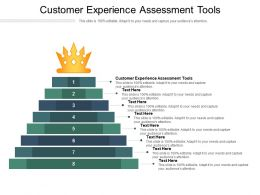 Customer Experience Assessment Tools Ppt Powerpoint Presentation Slides Portrait Cpb