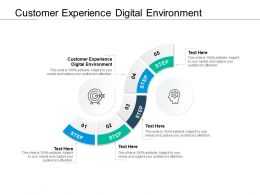 Customer Experience Digital Environment Ppt Powerpoint Presentation Slides Cpb