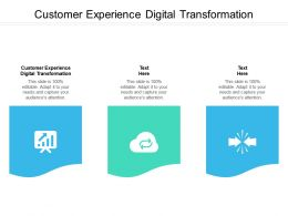 Customer Experience Digital Transformation Ppt Powerpoint Presentation Outline Demonstration Cpb