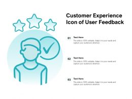 Customer Experience Icon Of User Feedback