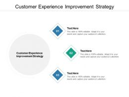 Customer Experience Improvement Strategy Ppt Powerpoint Presentation Styles Graphics Tutorials Cpb