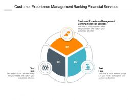 Customer Experience Management Banking Financial Services Ppt Powerpoint Presentation Cpb