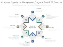 Customer Experience Management Diagram Good Ppt Example