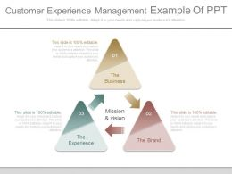Customer Experience Management Example Of Ppt