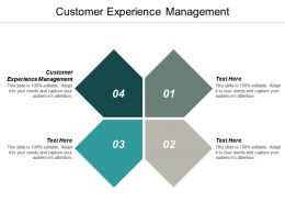 Customer Experience Management Ppt Powerpoint Presentation Ideas Template Cpb