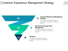 Customer Experience Management Strategy Business Continuity Crisis Management Cpb