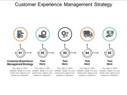 Customer Experience Management Strategy Ppt Powerpoint Presentation Gallery Grid Cpb