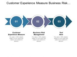 Customer Experience Measure Business Risk Management Business Working Capital Cpb
