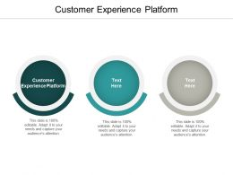 Customer Experience Platform Ppt Powerpoint Presentation Professional Show Cpb