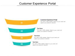 Customer Experience Portal Ppt Powerpoint Presentation File Demonstration Cpb