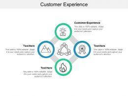Customer Experience Ppt Powerpoint Presentation Styles Elements Cpb