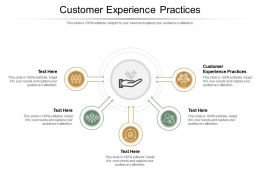 Customer Experience Practices Ppt Powerpoint Presentation Slides Graphic Images Cpb