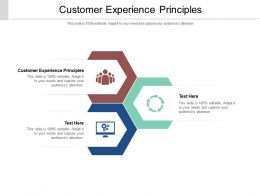 Customer Experience Principles Ppt Powerpoint Presentation Styles Graphics Cpb