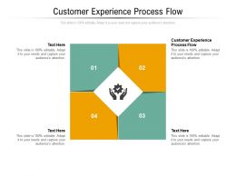 Customer Experience Process Flow Ppt Powerpoint Presentation Graphics Download Cpb