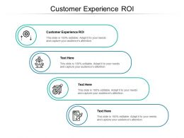 Customer Experience ROI Ppt Powerpoint Presentation Ideas Graphics Cpb