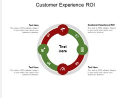 Customer Experience ROI Ppt Powerpoint Presentation Model Show Cpb