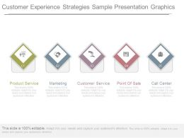 Customer Experience Strategies Sample Presentation Graphics