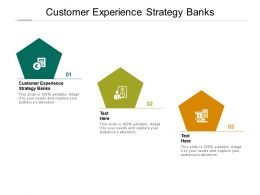 Customer Experience Strategy Banks Ppt Powerpoint Presentation Example File Cpb