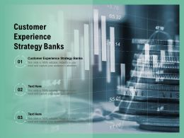 Customer Experience Strategy Banks Ppt Powerpoint Presentation Infographics Cpb