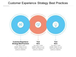Customer Experience Strategy Best Practices Ppt Powerpoint Presentation Model Design Templates Cpb